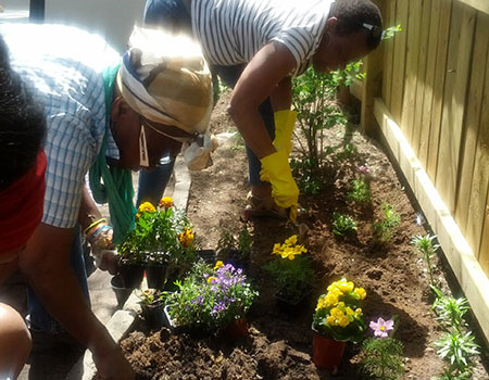 Planting a summer garden at the Shelter